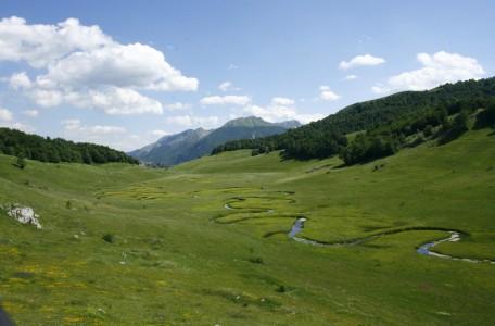 Studeni potok (Foto: Olja Latinović)